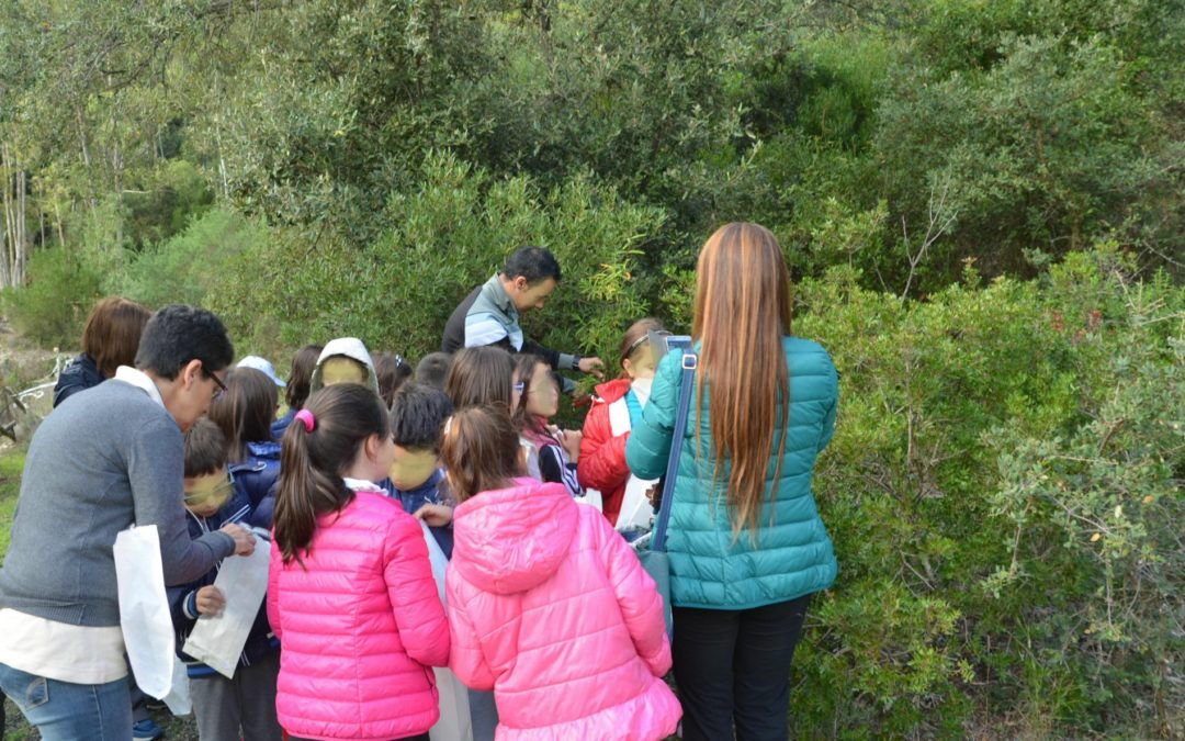 L'Erba Voglio: il progetto di educazione ambientale sulle piante e sulle erbe